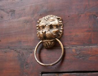 Lion Through His Teeth
